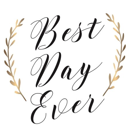 Best Day Ever Paper Cocktail Napkin, 20 count, Accent the decor at your next gathering or party with these napkins By Cypress Home from
