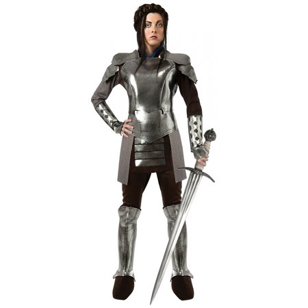 Snow White Armor Adult Costume - Small