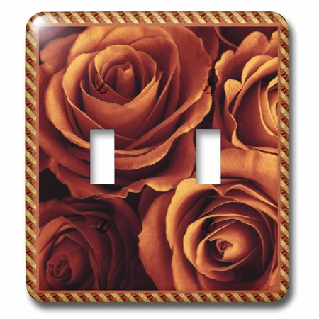 3dRose Close up scene of dreamy rich orange gold roses surrounded by a striped frame - Double Toggle Switch (lsp_29924_2) - Stripes Bar Scene