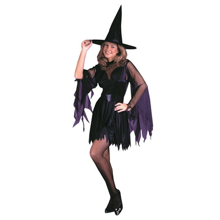 Sassy Witch Adult Halloween Costume, One Size](Adult Witches Costume)