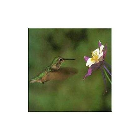 Mcgowan Tt99826 Tuftop Hummingbird And Columbine Trivet