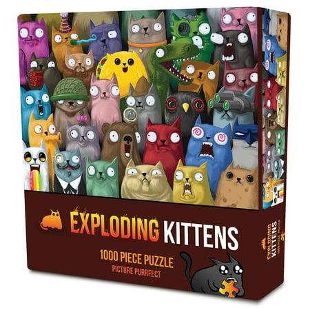 Mega Picture Puzzles (Exploding Kittens: Picture Purrfect 1000 Piece)