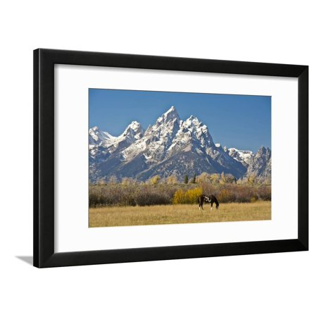 Horse And Grand Tetons Moose Head Ranch Grand Teton