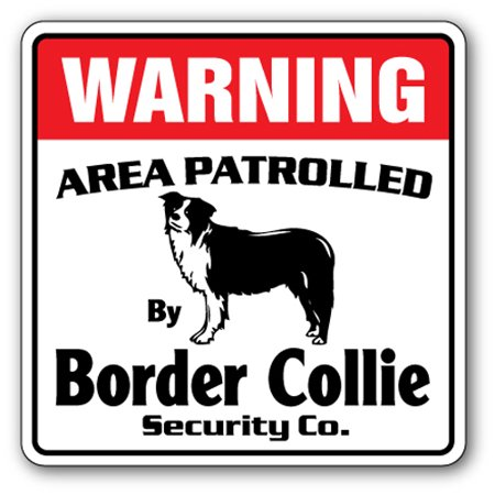 BORDER COLLIE Security Sign Area Patrolled pet herding dog vet lover animal