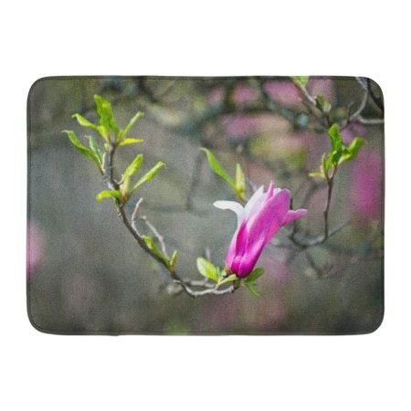 GODPOK Magnolia Flower on Tree Branch Blurred Blossoming with Violet Petals and Green Leaves Spring Bloom Rug Doormat Bath Mat 23.6x15.7 inch ()
