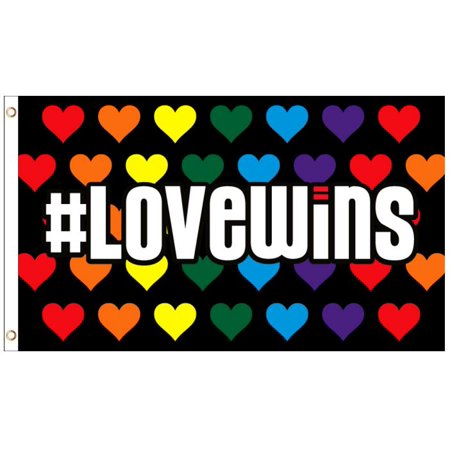 - Love Wins Rainbow Hearts LGBT Gay Lesbian Pride Polyester 3x5 Foot Flag Banner