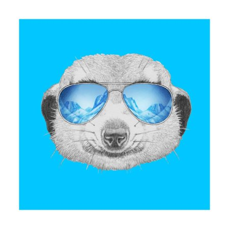 - Portrait of Mongoose with Mirror Sunglasses. Hand Drawn Illustration. Print Wall Art By victoria_novak