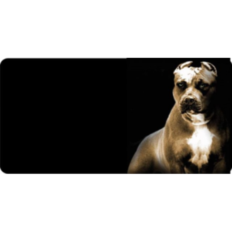Boxer Dog Photo License Plate Free Personalization on This Plate
