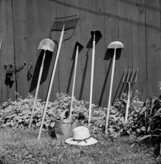 Close up of gardening tools leaning against wall Canvas Art -  (24 x 36)