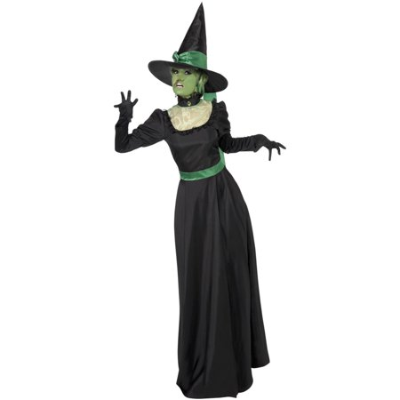 fea855608 Classic Dark Witch Adult Costume - Walmart.com