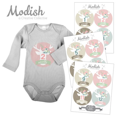 Monthly Baby Stickers, Girl, Deer, Floral Antlers, Woodland, Flowers, Baby Photo Prop, Baby Shower Gift, Baby Book Keepsake, Modish Labels - Photo Stickers