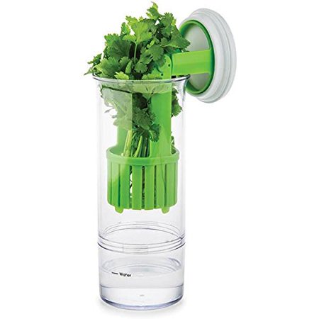 Prep Solutions by Progressive PS-15 Fresh Herb Keeper
