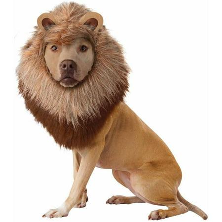 Animal Planet Lion Pet Halloween Costume for $<!---->