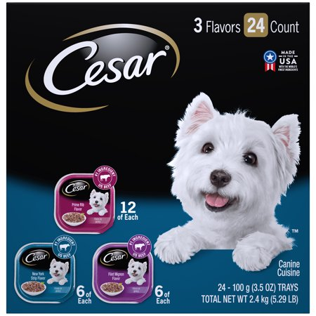 CESAR Wet Dog Food Filets in Gravy Filet Mignon, New York Strip, and Prime Rib Flavors Variety Pack, (24) 3.5 oz. (Best Healthy Weight Dog Food)