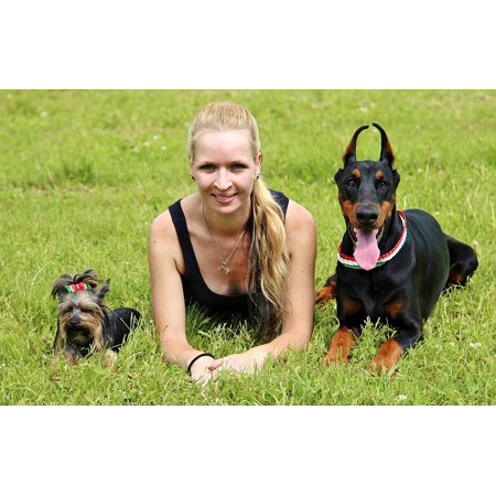 LAMINATED POSTER Doberman Women And Dogs Location Yorkie Poster Print 24 x