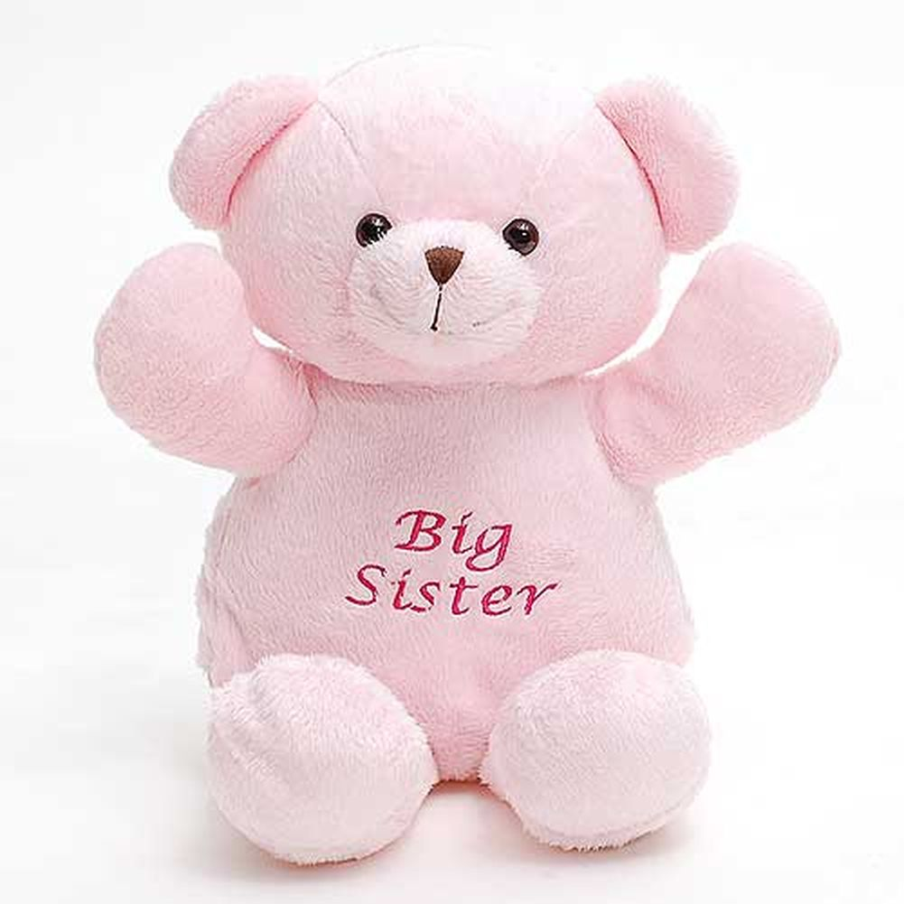 Personalized Pals Little Girls Pink Bear Stuffed Plush Animal