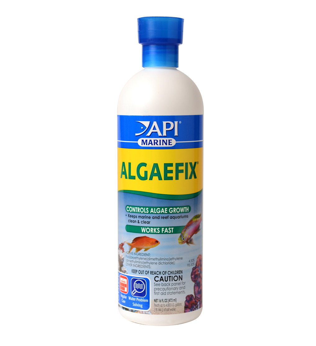 API Marine Algaefix, Algae Control Solution, 16 oz