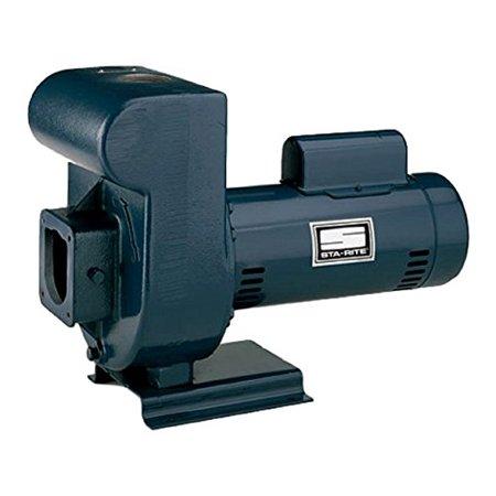 3-Phase Medium Head D-Series Self-Priming Centrifugal Commercial Pool Pump, 230/460-Volt, 5 HP