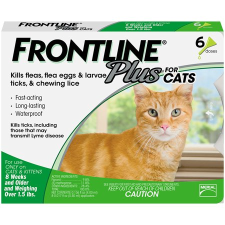 FRONTLINE Plus for Cats and Kittens (1.5 lbs and over) Flea and Tick Treatment, 6 (Best Over The Counter Flea Treatment)