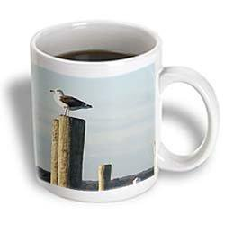 3dRose Seagull Standing Guard On Dock Pylon, Ceramic Mug, 11-ounce