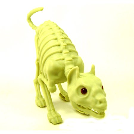 CAT SKELETON Bones Lights Sound Scary Decor Party Decoration Accessories - Skeleton Party