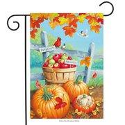 """Roadside Pumpkins Fall Garden Flag Apples Leaves Cardinal Autumn Basket 12""""x18"""""""