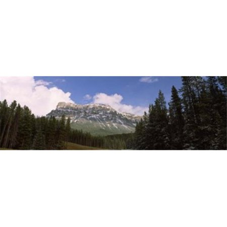 Low angle view of a mountain  Protection Mountain  Bow Valley Parkway  Banff National Park  Alberta  Canada Poster Print by  - 36 x