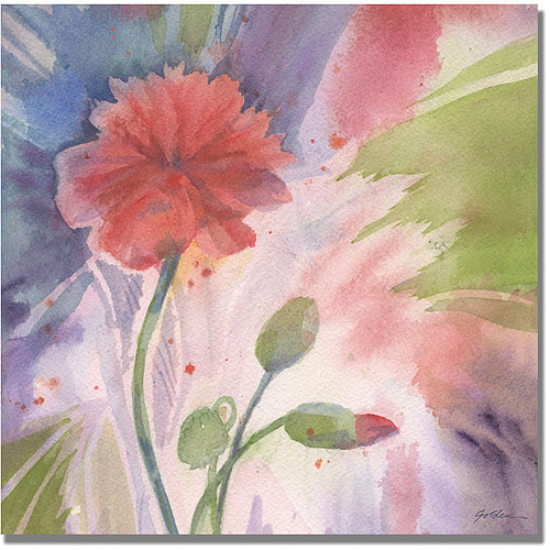 Trademark Art 'Budding Poppy' Canvas Art by Shelia Golden