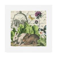 Trademark Fine Art 'Garden Rabbit II' Canvas Art by Wild Apple Portfolio