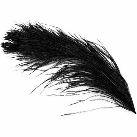 Ostrich Plume Feathers 1/Pkg-Black - Ostrich Plume Feathers