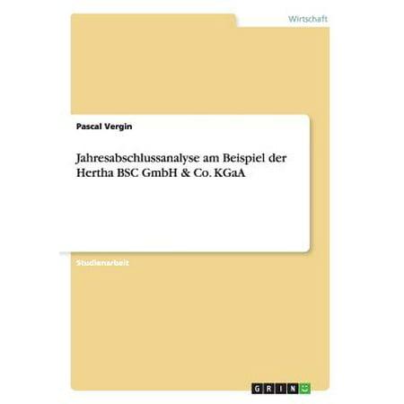 Jahresabschlussanalyse Am Beispiel Der Hertha BSC Gmbh & Co. Kgaa