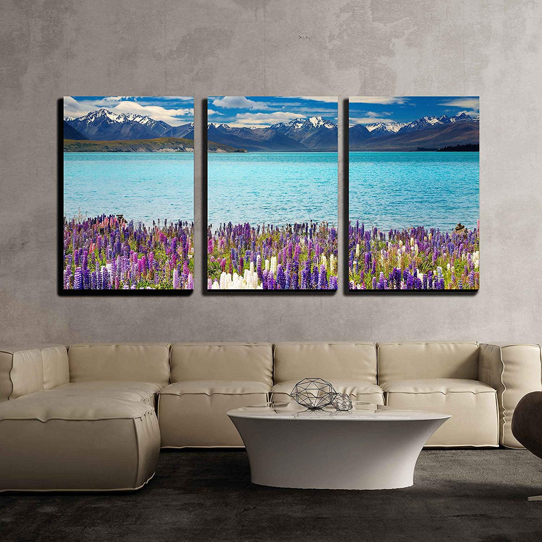 New Zealand Home Decor: 3 Piece Canvas Wall Art