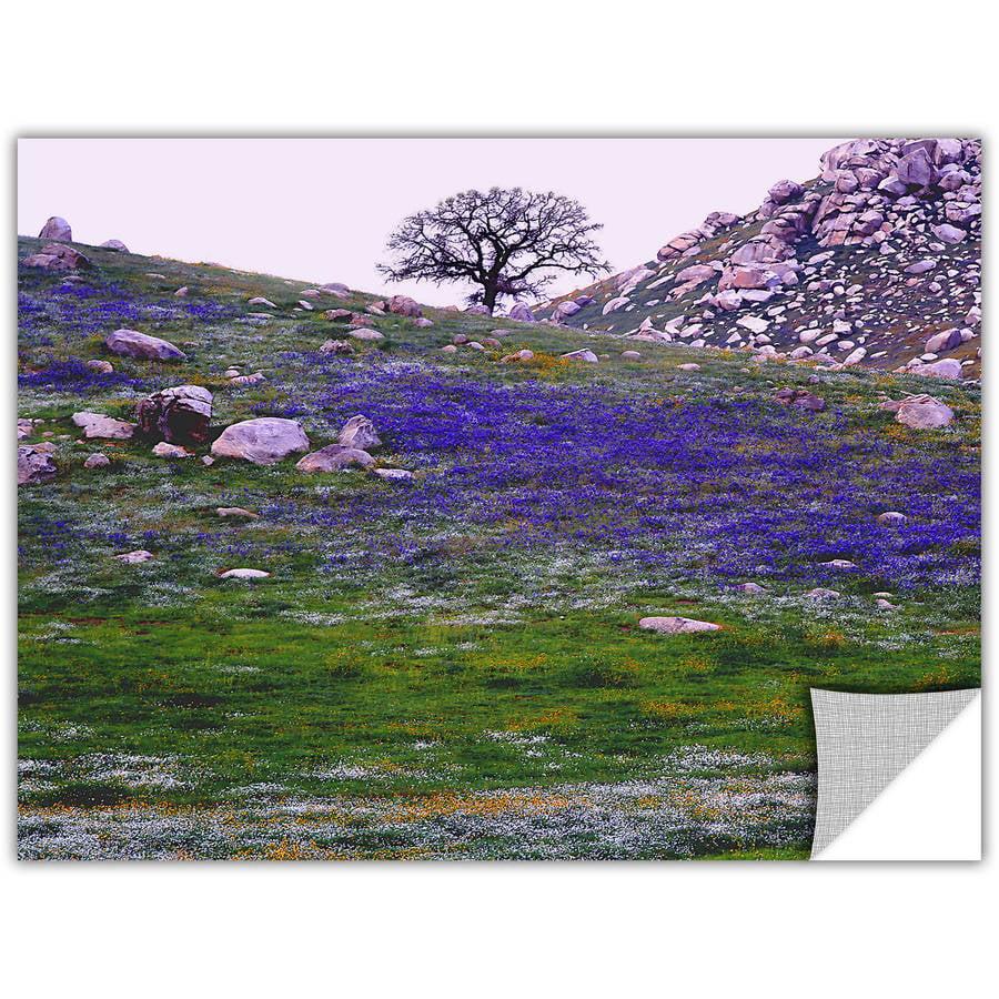 "Dean Uhlinger ""Sierra Foothills Spring"" Removable Wall Art"