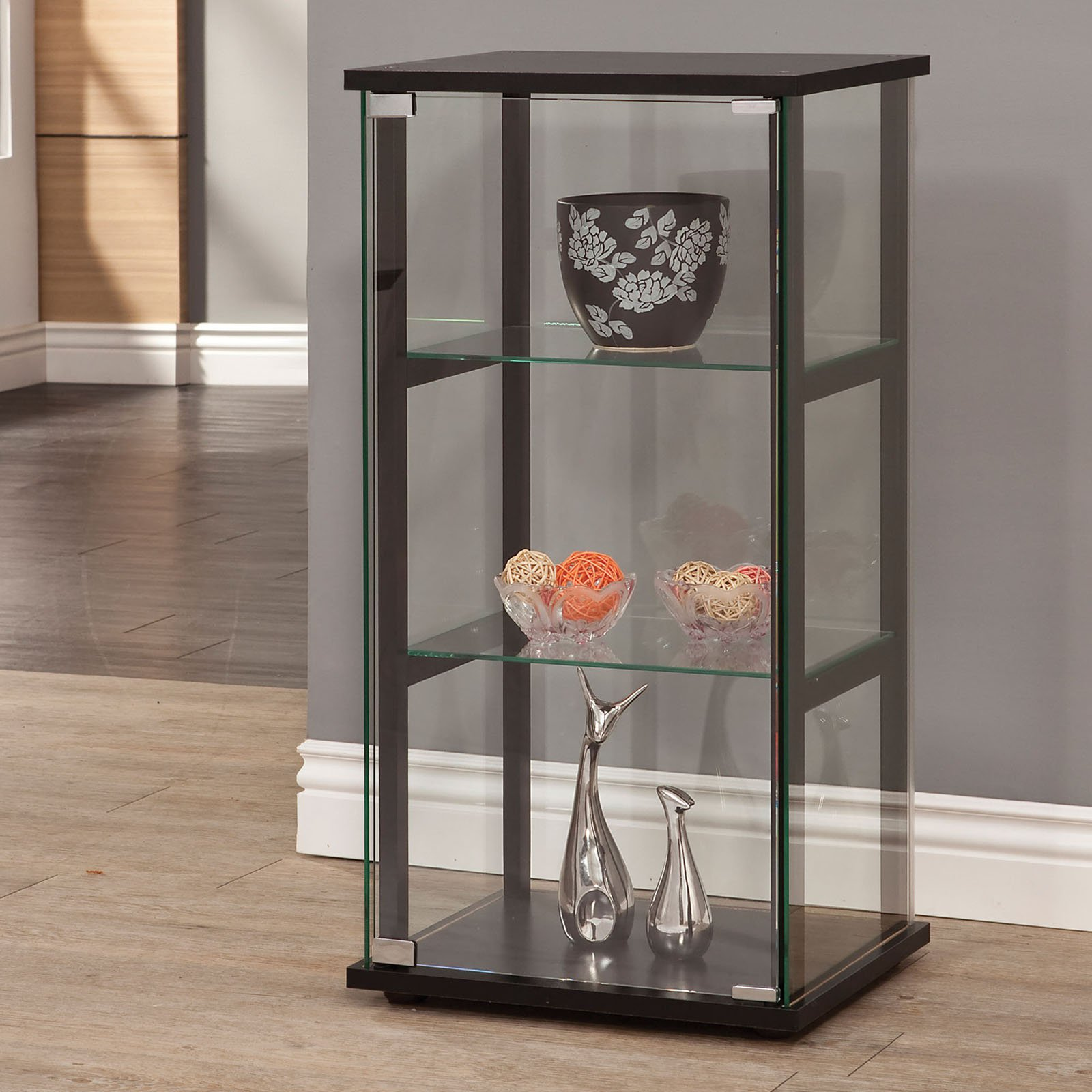 Coaster Company Glass Curio and Simple Black Frame