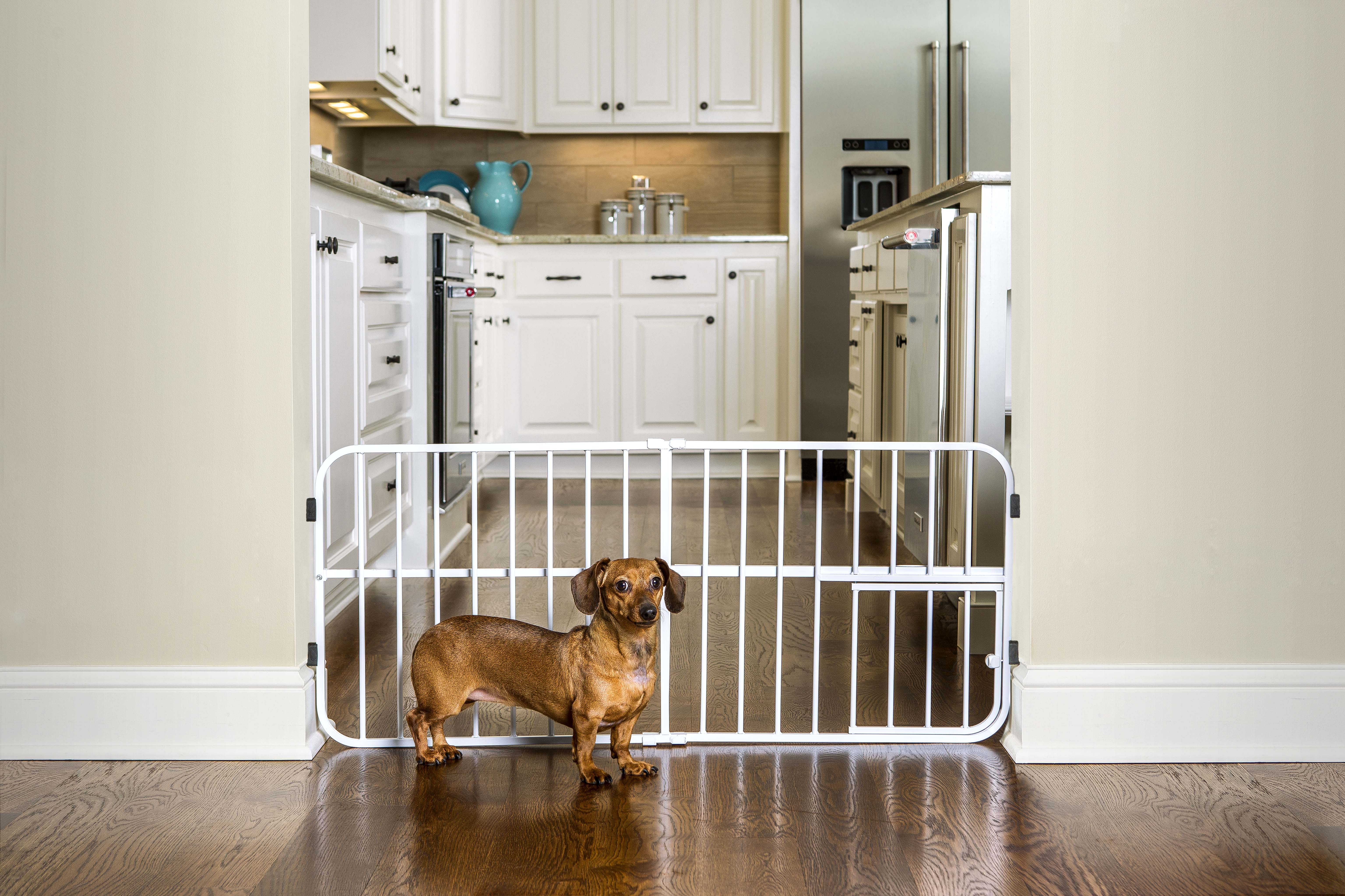 carlson pet products lil tuffy pet gate metal
