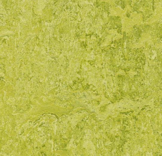 "FORBO Marmoleum Click CinchLoc 12""x12"" Square Tiles 7 Square Tiles/6.78 sf"