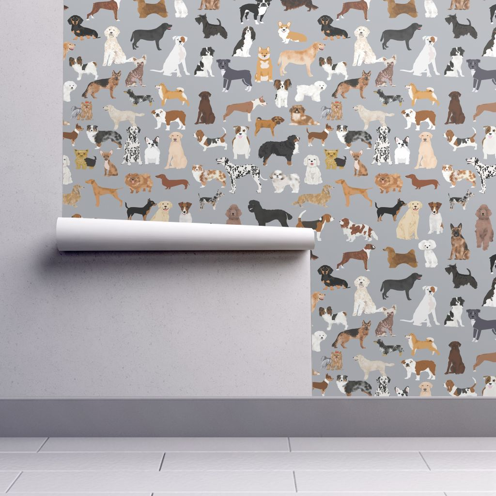 Wallpaper Roll or Sample: Dog Dogs Dog Breed Dog Breeds Cute Dog Grey Dog