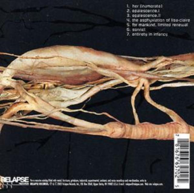 Transfer Trachea Reverberations