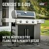 Weber Genesis II E-315 LP Black