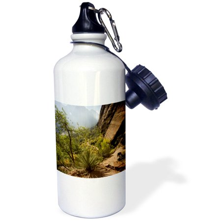 3dRose Angels Landing Trail, Zion National Park, Utah - US45 DPB0014 - Douglas Peebles, Sports Water Bottle, 21oz