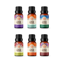GuruNanda, 100% Pure and Natural Top 6 Essential Oil Singles, 6-Pack, 10m each