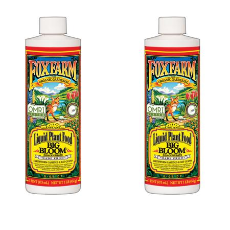 FoxFarm Big Bloom Liquid Concentrate Liquid Plant Food, 2-Pack | FX14091 (Big Bloom Liquid Concentrate)