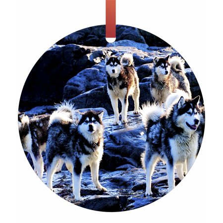 Hanging Tip (Huskies on Snow Tipped Mountains Hanging Round Shaped Tree Ornament - (Flat) - Holiday Christmas - Tm - Made in the USA)