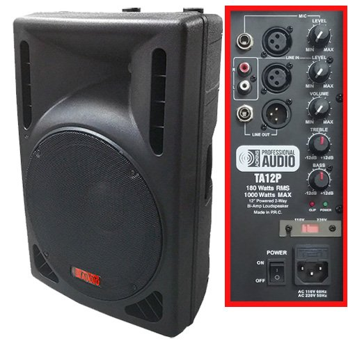 1000 Watt Powered DJ Speaker - 12-inch - Bi-Amp 2-Way Active Speaker System by Adkins Pro Audio - TA12P