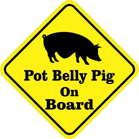 StickerTalk® Brand 5in x 5in Pot Belly Pig On Board On Board magnet bumper  magnetic Vinyl magnets