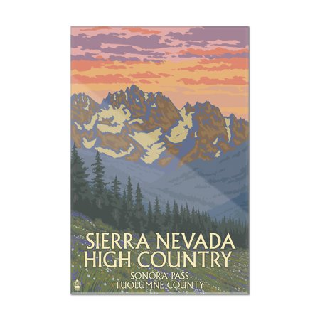 Sonora Spring - Sonora Pass, Tuolumne County - Sierra Nevada High Country - Spring Flowers - Lantern Press Artwork (8x12 Acrylic Wall Art Gallery Quality)