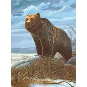 "Junior Small Paint By Number Kit 8.75""X11.75""Grizzly Bear"