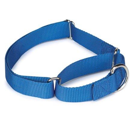 Gg Nylon Martingale Collar 18-26in Blue
