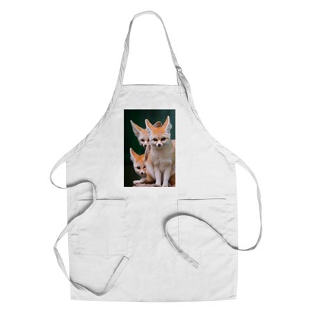 Fennec Foxes   Lantern Press Photography  Cotton Polyester Chefs Apron