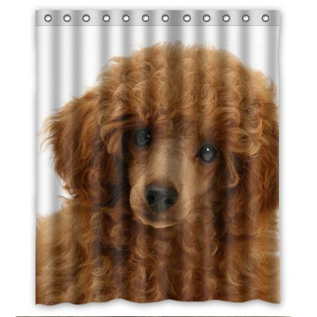 GreenDecor Wholesale Litter Poodle Waterproof Shower Curtain Set with Hooks Bathroom Accessories Size 60x72 inches